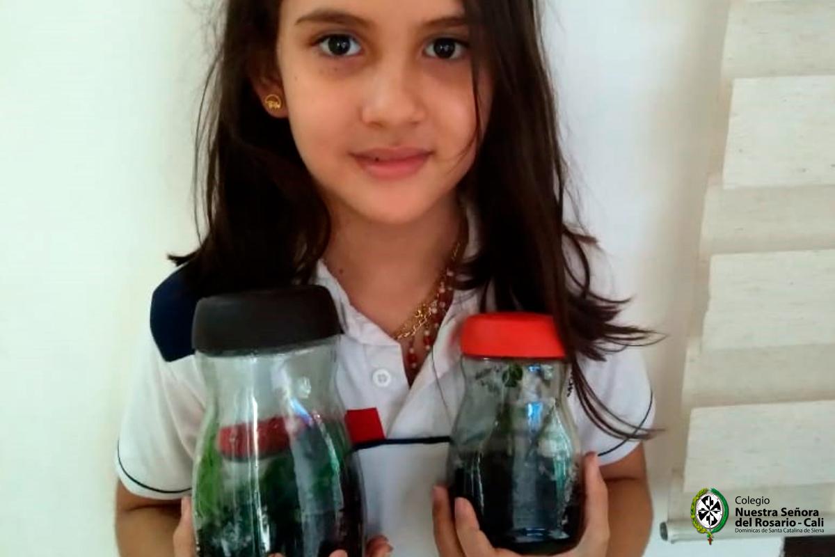Eco School 8